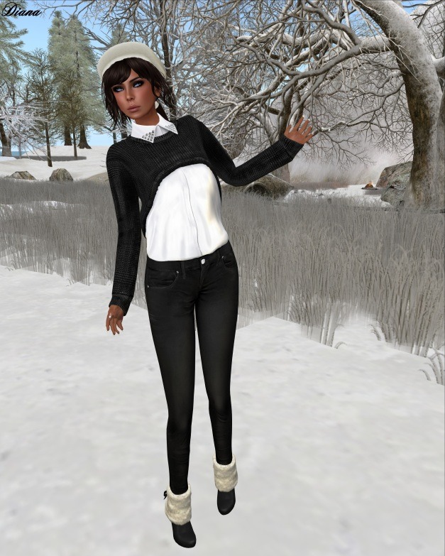 COCO - CroppedSweater&Shirt (Black)
