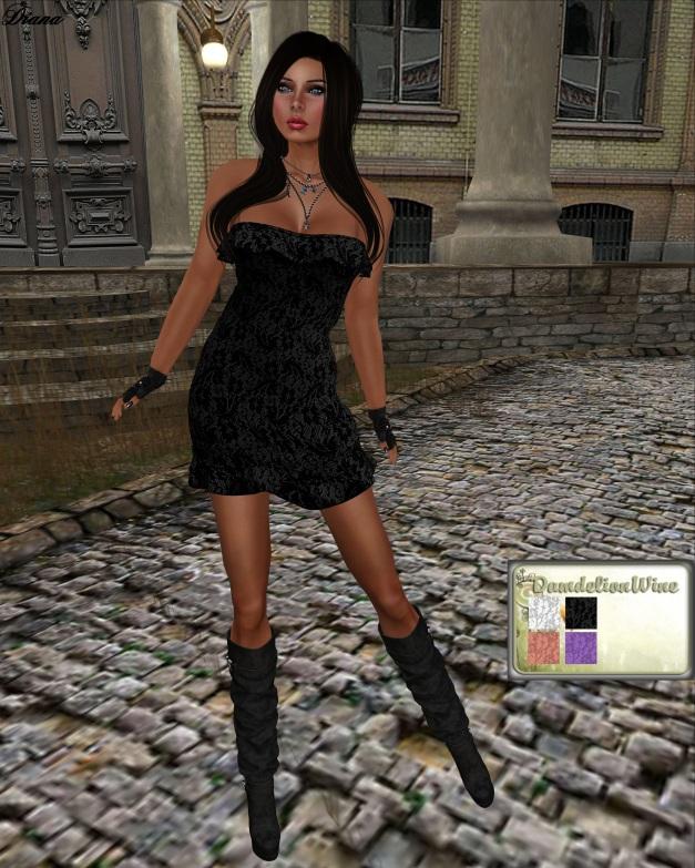 DandelionWine - Mesh Lace Dress Subscribe Gift