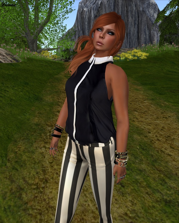 Coco - SleevelessBlouse and StripedPants-2