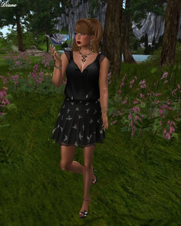 Zaara -  Mesh Chaitra Chiffon Dress (Birds)-1