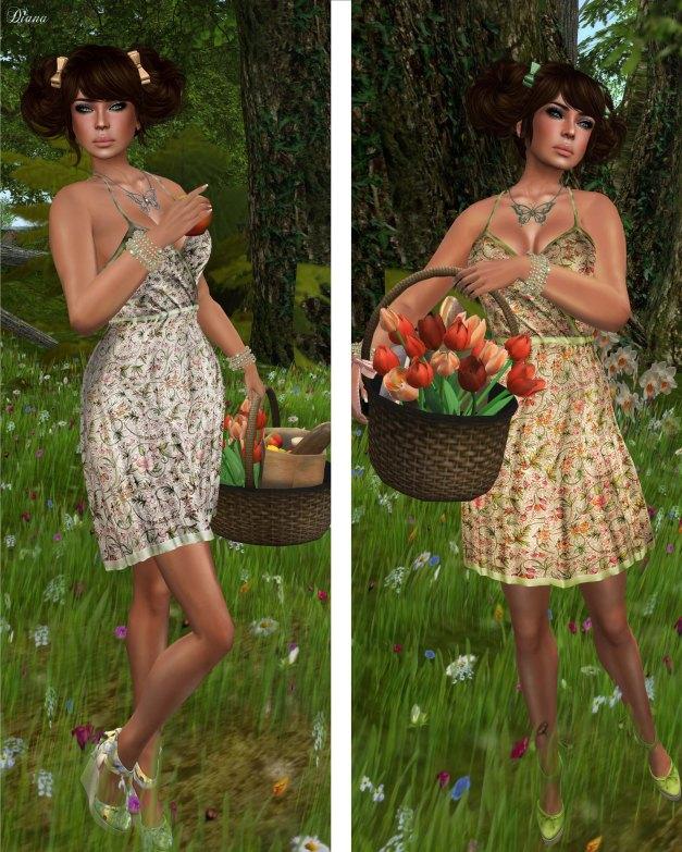 GizzA - Picnic Dress Floral