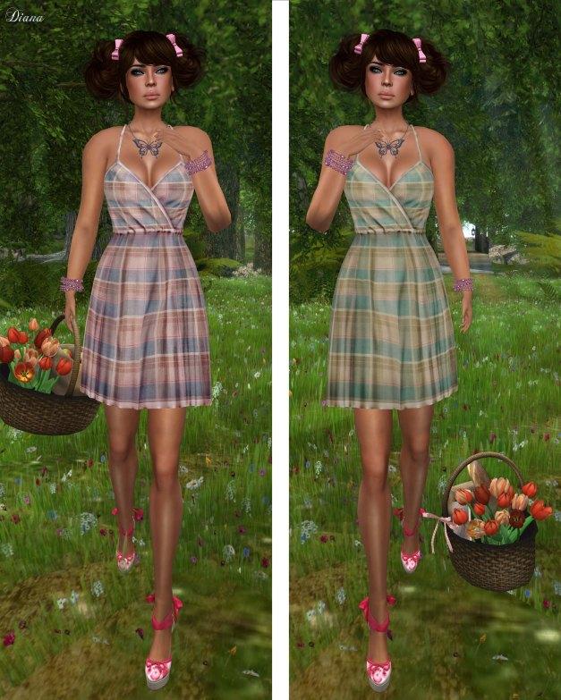 GizzA - Picnic Dress Plaid