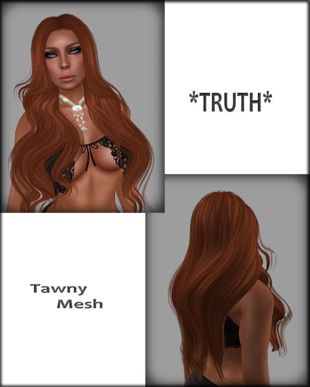 Tawny Mesh Gingers03