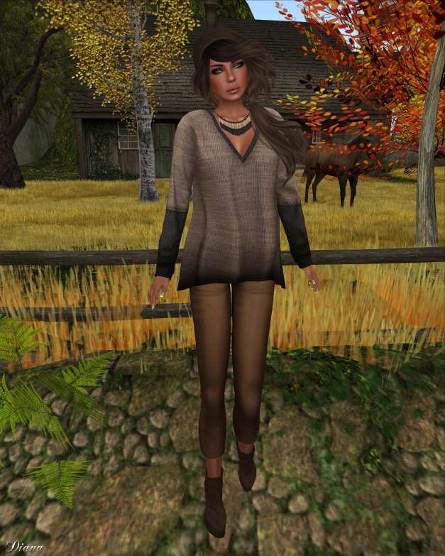 coldLogic - shirt noyce and jeggings meester