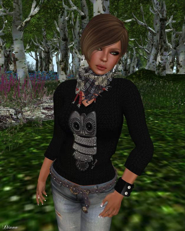 Immerschoen-BodyCult - Mesh Shirts Hedwig the Owl 3 Colors Kit-1