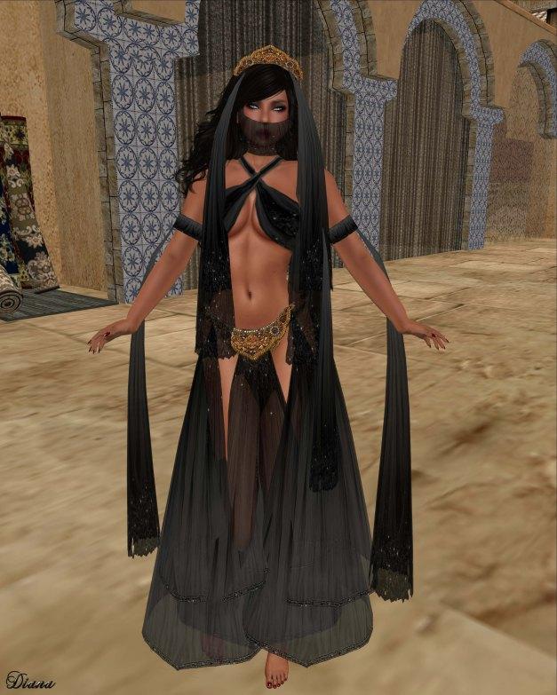 Hudson`s Clothing - Arabian Nights Ebony Silks