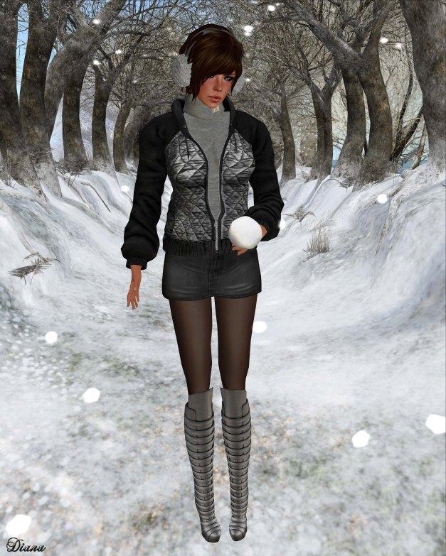DCNY - Warm-Up Jacket BlackSilver