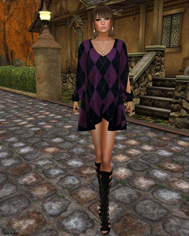 Hudson`s Clothing - Grape Argyle Mesh Dress