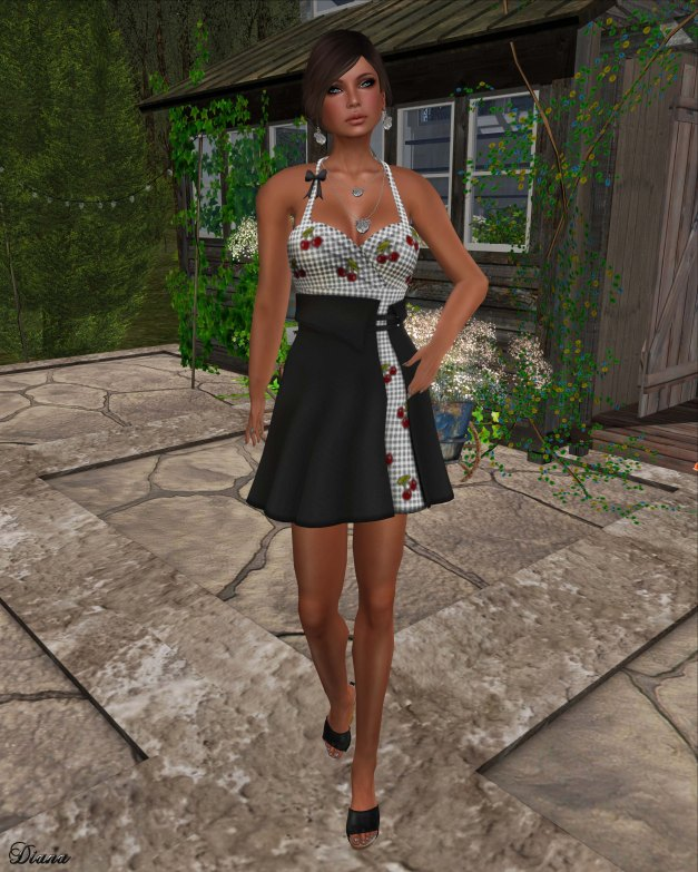 !Rebel Hope - Sally Mesh Dress black