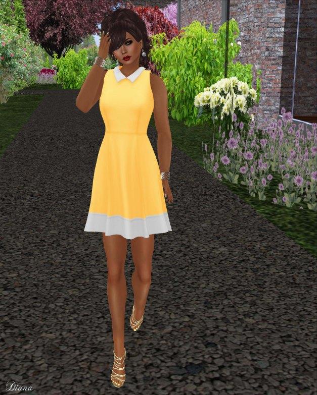 coldLogic - dress warbler