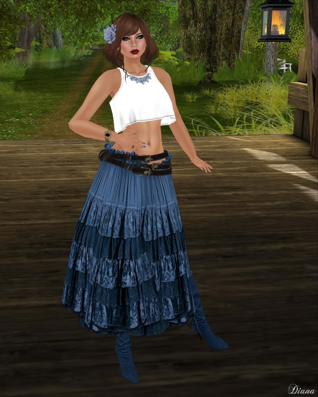 Hudsons Clothing - Sleeveless Summer Crop Top and Denim Floral Peasant Skirt