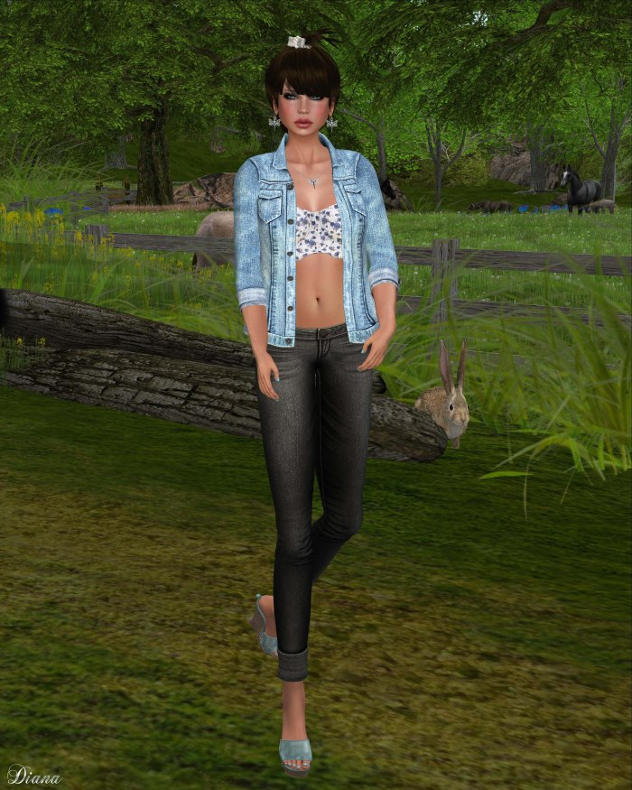 MotiAme - Denim Jacket & Bustier and D-Style - Cuffed Jeans-1