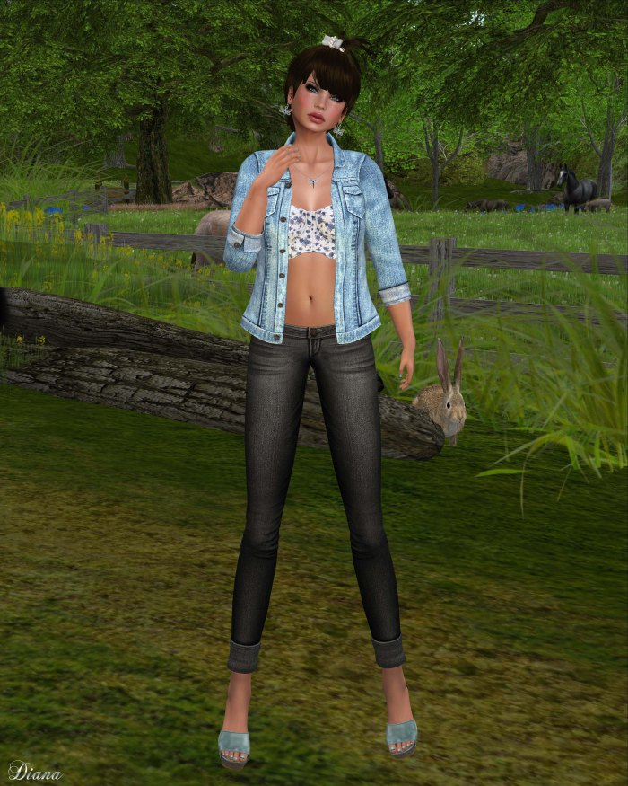 MotiAme - Denim Jacket & Bustier and D-Style - Cuffed Jeans-2