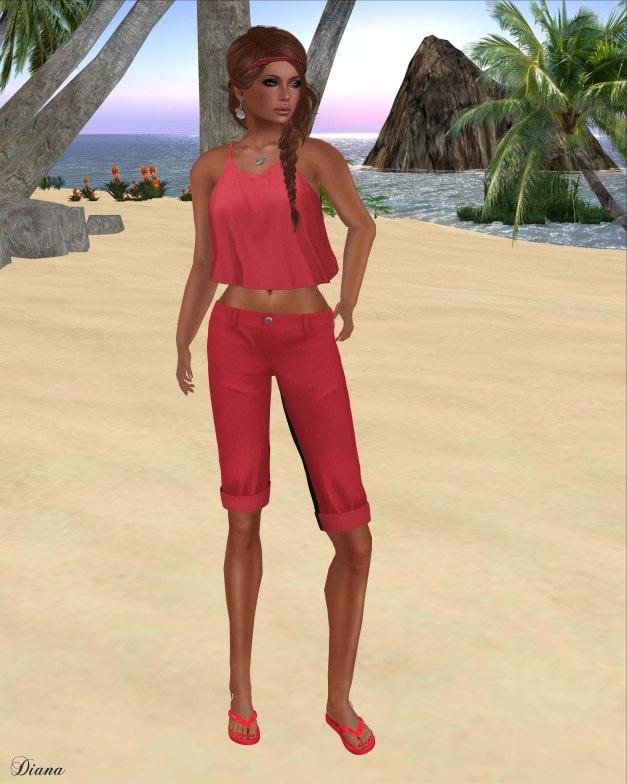 coldLogic - shirt sisney and pants davar cherry
