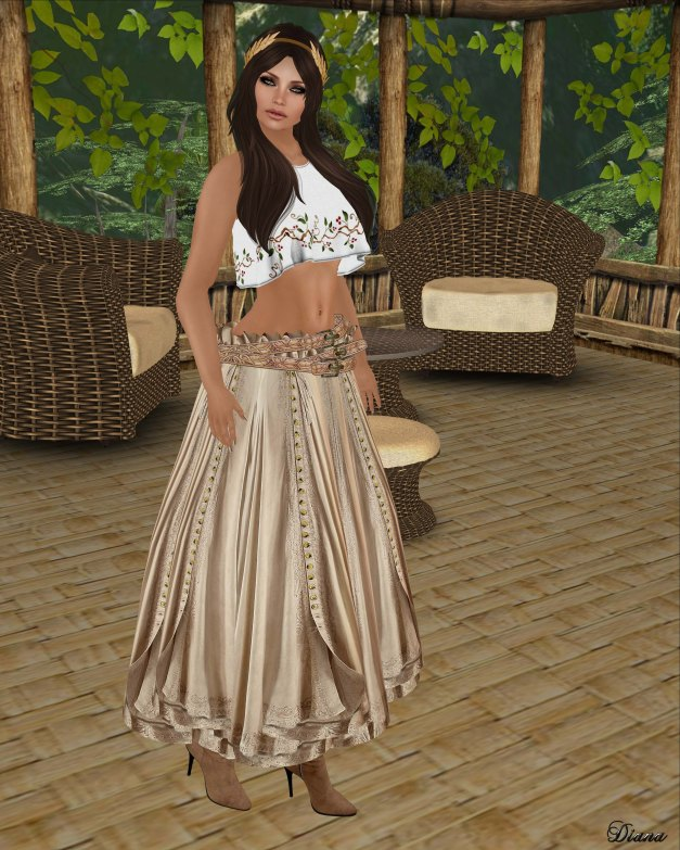 Hudson`s Clothing - Embroidered Linen Sleeveless Crop Top and Buttoned Boho Gypsy Skirt-2