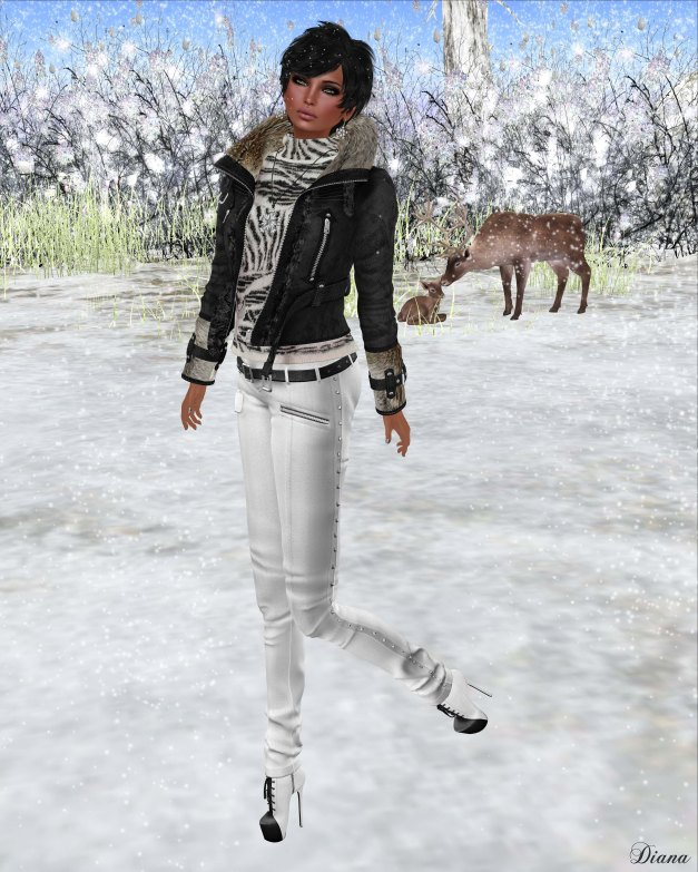 Redgrave - Mesh SuedeFur Leather Jacket FOX and Mesh Skinny crease Pants - Samantha-4