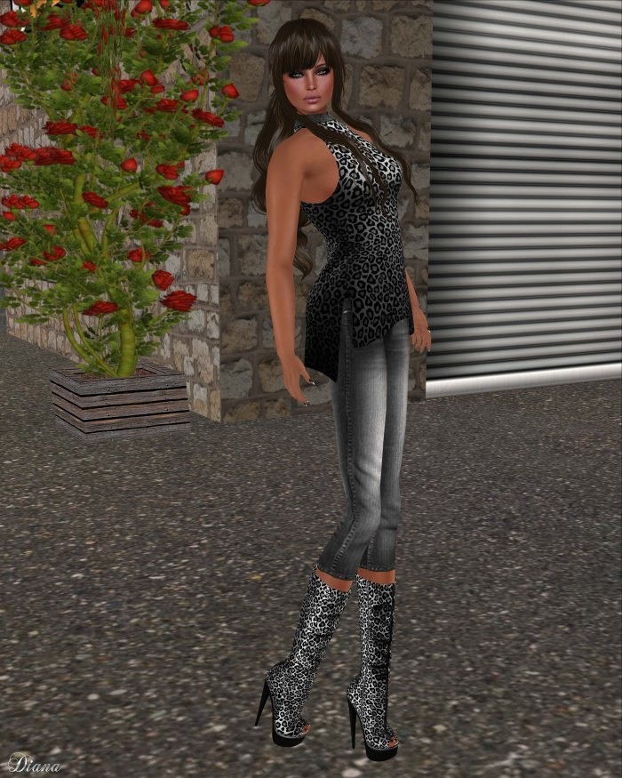 Immerschoen - BC Turtleneck Top Leo silver and BC Mesh Boots Carmen Slink Leo silver