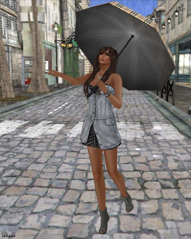 Gabriel - Maria Denim Dress Gray