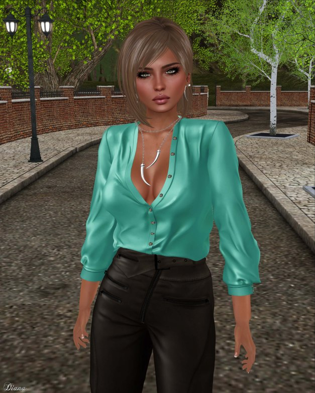 Ricielli - Moira Leather Pants Espresso and Porsha Shirt Lagoon
