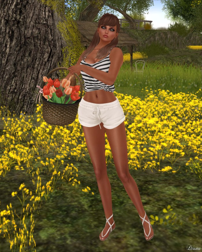 Teefy - Kelly Knotted Tank and Anja Shorts