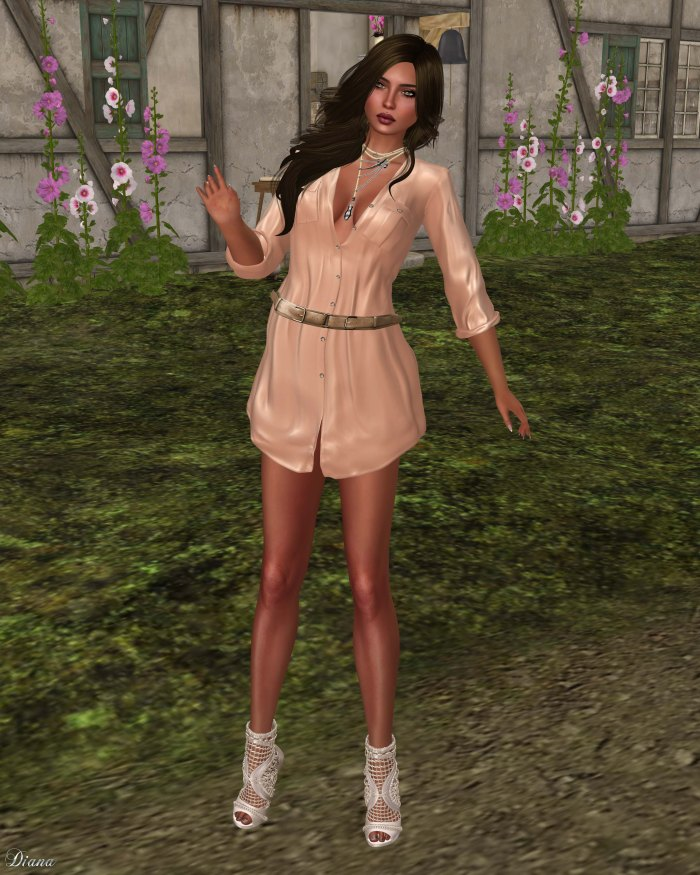 Ricielli - Dress Shirt Nude