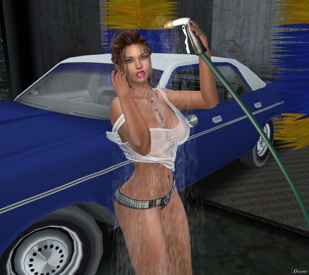 should-i-wash-your-car-1