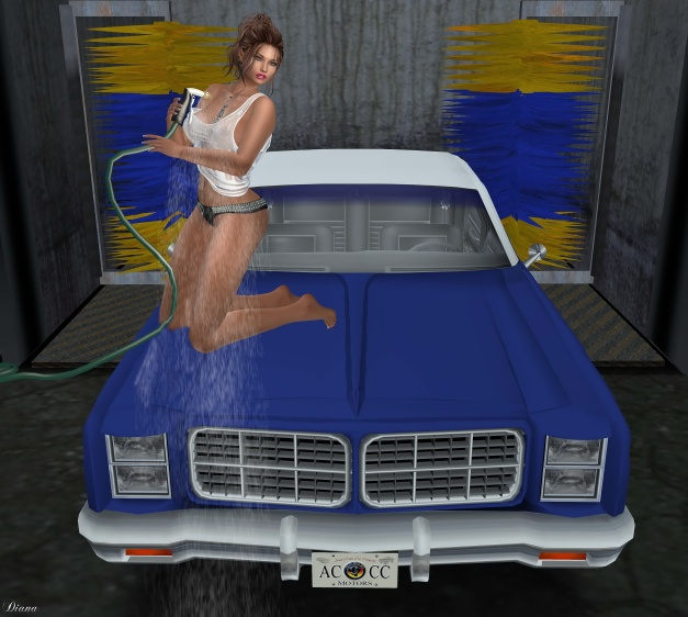 should-i-wash-your-car-3